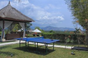 33-thejiwa-ping-pong-in-the-garden-